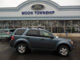 2010 Steel Blue Metallic Ford Escape XLT V6 4WD #76456530