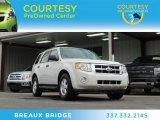2009 White Suede Ford Escape XLT V6 #76499971