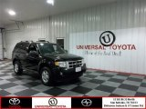 2009 Black Ford Escape XLT V6 4WD #76499395