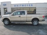 2013 Pale Adobe Metallic Ford F150 XLT SuperCab 4x4 #76499797
