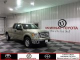 2012 Pale Adobe Metallic Ford F150 XLT SuperCab #76564629