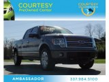 2011 Sterling Grey Metallic Ford F150 Platinum SuperCrew 4x4 #76565059