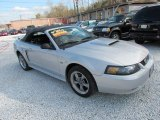 2002 Satin Silver Metallic Ford Mustang GT Convertible #76624726