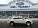 2009 Light Sage Metallic Ford Escape Limited V6 #76624324