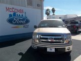 2013 Pale Adobe Metallic Ford F150 XLT SuperCrew #76740385
