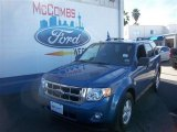 2010 Steel Blue Metallic Ford Escape XLT #76740435