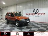 2006 Blazing Copper Metallic Ford Escape XLT #76740415