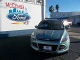 2013 Frosted Glass Metallic Ford Escape SE 1.6L EcoBoost #76740414