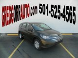 2013 Kona Coffee Metallic Honda CR-V LX #76767992