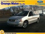 2007 Silver Frost Metallic Ford Freestar SEL #76767975