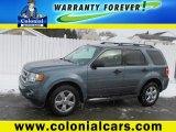 2010 Steel Blue Metallic Ford Escape XLT V6 4WD #76773836