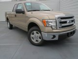 2013 Pale Adobe Metallic Ford F150 XLT SuperCab #76773677
