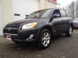2010 Black Forest Pearl Toyota RAV4 Limited 4WD #76804476