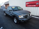 2010 Mineral Gray Metallic Dodge Dakota ST Extended Cab 4x4 #76804601
