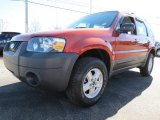 2006 Blazing Copper Metallic Ford Escape XLS #76874182