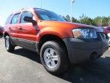 2006 Ford Escape Blazing Copper Metallic