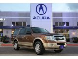 2011 Golden Bronze Metallic Ford Expedition XLT #76873443