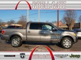 2010 Sterling Grey Metallic Ford F150 Platinum SuperCrew 4x4 #76928688