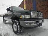 2001 Forest Green Pearl Dodge Ram 1500 SLT Regular Cab 4x4 #76929330
