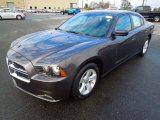 2013 Granite Crystal Dodge Charger SE #76987635