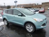 2013 Frosted Glass Metallic Ford Escape SE 1.6L EcoBoost 4WD #77042539