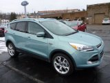 2013 Frosted Glass Metallic Ford Escape Titanium 2.0L EcoBoost 4WD #77042534