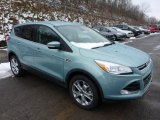 2013 Frosted Glass Metallic Ford Escape SEL 2.0L EcoBoost 4WD #77042533