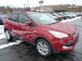 2013 Ruby Red Metallic Ford Escape SEL 1.6L EcoBoost 4WD #77042530