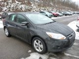 2013 Tuxedo Black Ford Focus SE Sedan #77042525