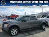 2010 Sterling Grey Metallic Ford F150 FX4 SuperCrew 4x4 #77042634
