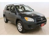 2010 Black Forest Pearl Toyota RAV4 I4 4WD #77077406
