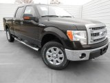 2013 Kodiak Brown Metallic Ford F150 XLT SuperCrew 4x4 #77077264