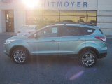 2013 Frosted Glass Metallic Ford Escape SEL 1.6L EcoBoost 4WD #77107490