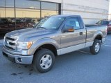 2013 Ford F150 XLT Regular Cab 4x4 Data, Info and Specs