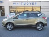 2013 Ginger Ale Metallic Ford Escape SE 1.6L EcoBoost 4WD #77107477