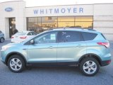 2013 Frosted Glass Metallic Ford Escape SE 1.6L EcoBoost 4WD #77107476