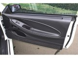 2002 Ford Mustang GT Coupe Door Panel