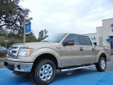 2013 Pale Adobe Metallic Ford F150 XLT SuperCrew 4x4 #77218982