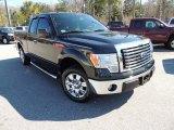 2011 Ebony Black Ford F150 XLT SuperCab #77270592