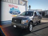 2010 Sterling Grey Metallic Ford F150 FX4 SuperCrew 4x4 #77270336