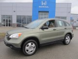 2007 Green Tea Metallic Honda CR-V LX 4WD #77399028