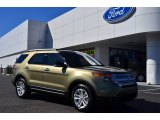 2013 Ginger Ale Metallic Ford Explorer XLT #77454043