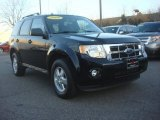 2009 Black Ford Escape XLT 4WD #77555419