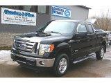 2011 Ebony Black Ford F150 XLT SuperCab 4x4 #77635207