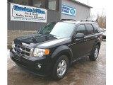 2009 Black Ford Escape XLT V6 4WD #77635200