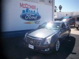 2009 Blue Diamond Tri-Coat Cadillac CTS Sedan #77761612
