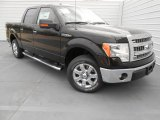 2013 Kodiak Brown Metallic Ford F150 XLT SuperCrew #77761783