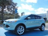 2013 Frosted Glass Metallic Ford Escape Titanium 2.0L EcoBoost #77819396