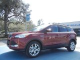2013 Ruby Red Metallic Ford Escape SE 1.6L EcoBoost #77819394