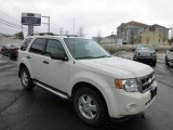 2009 White Suede Ford Escape XLT V6 4WD #77819436